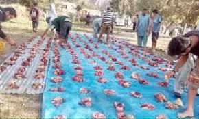 Qurbani meat in Hunza